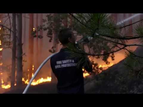 Борбата с огъня край Кресна