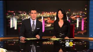 Sharon Tay 2012/12/05 KCAL9 HD