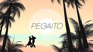 Don Miguelo - Pegaito (LYRICS VIDEO)
