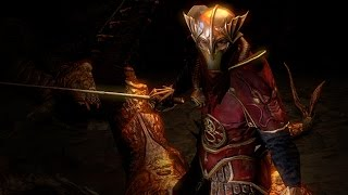 Path of Exile - Dragon Body Armour
