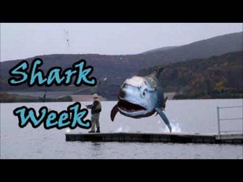 Download SHARKENSTEIN (2016): A Shark Week & Wild Eye Review