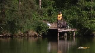 Озеро ''Рыбацкая стрелка''. Живописное, тихое и уютное место. Рыбалка в Украине