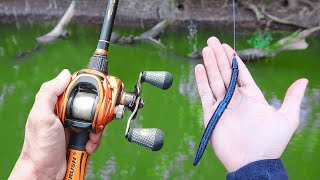 Catch 15x MORE Bass  TRY THIS! (Bass Fishing Tips)