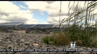 Solar Energy Farms Cutting Mass. Communities' Energy Costs