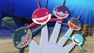 Finger Family | Shark Finger Family | Sharks | Kids Songs | Finger Family Nursery Rhymes