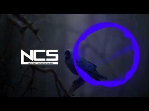 Alan Walker   Heading Home NCS Release