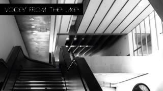 04 Voices from the Lake - Richiami e Oscillazioni [Editions Mego]