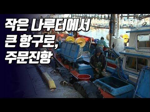 강원도에서 오징어배가 가장 많은 항구,주문진항 [와보랑께, 섬으로]