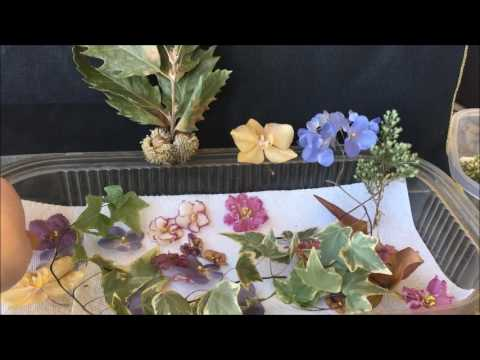 An extended talk about drying flowers in silica gel