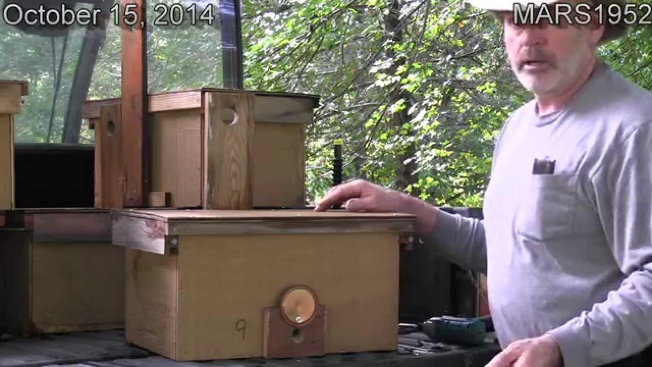 DIY Honey Bee Swarm Bait Hive Trap Part 2