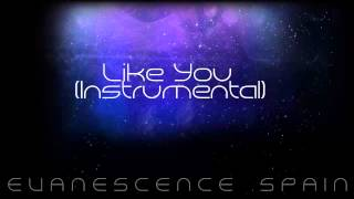 Evanescence Like You Instrumental [HD 720p]