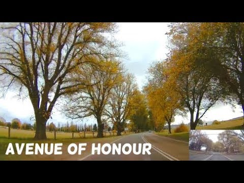 Bacchus Marsh - Victoria - Avenue Of Honour