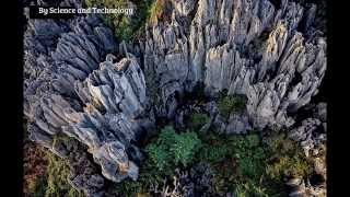 Forests of rock :Reveal the towering arches and pillars of limestone which dominate ancient lands