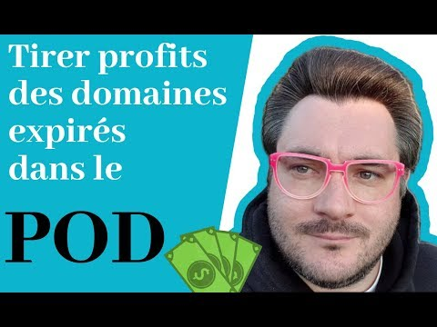 ⚡ Tirer profits des domaines expirés dans le POD