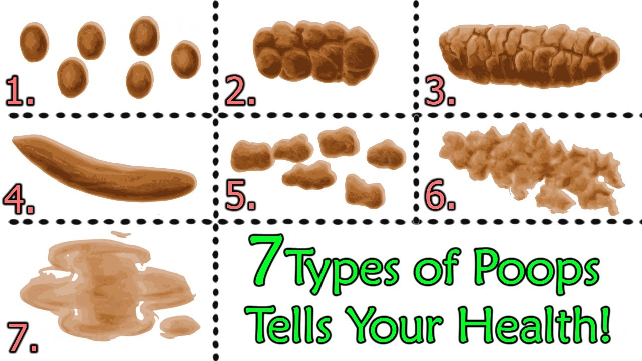 Surprise About Your Poops? Here Are 7 Types Of Poops Tells About ...