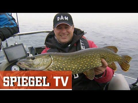 Petri Heil! - Volkssport Angeln (SPIEGEL TV Doku)