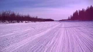 Ahpun The Siberian Husky Labrador Mix Skijoring On The Chena River, Fairbanks, Alaska