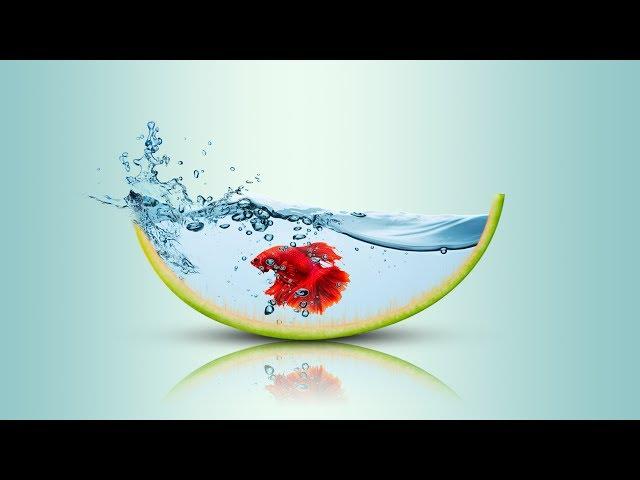 Watermelon & Gold fish photo manipulation