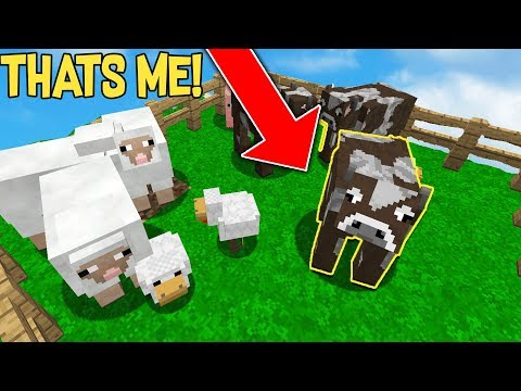DISGUISING AS A COW AND HIDING IN KIDS FARM...