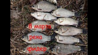 ЛОВЛЯ КАРАСЯ на фидер Рыбалка с берега на 8 Марта
