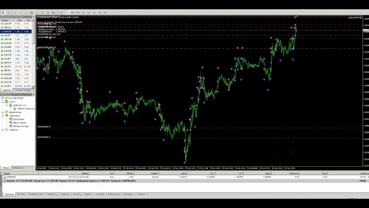 Как работает робот на форексе видео торговая стратегия форекс торговая система