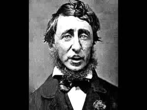 "henry david thoreau civil disobedience essay summary 4 a teacher's guide to henry david thoreau's walden and ""civil disobedience"" synopsis of the essay nature of government in the opening of ""civil."