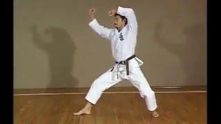 КАТА в исполнении японских мастеров (медленно)