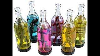 ไปดู !! 9 เครื่องดื่มสุดแปลกที่จะท้าให้คุณต้องคิดแล้วคิดอีกก่อนลอง