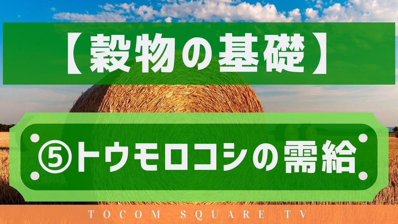穀物の基礎知識⑤トウモロコシの需給「TOCOMスクエアTV」商品先物相場展望