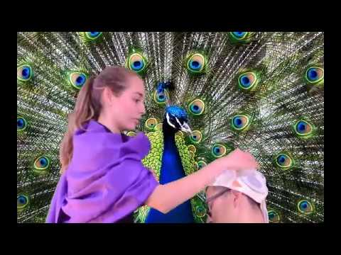 Mito: La creacion del pavo real
