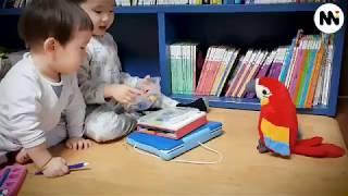 말 따라 하는 앵무새 가지고노는 아이들