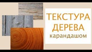 ТЕКСТУРА ДЕРЕВА  Рисуем карандашом