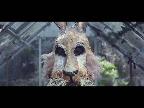 Rabbit Hole - Michael Morris