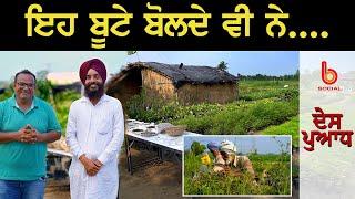 ਇਹ ਬੂਟੇ ਬੋਲਦੇ ਵੀ ਨੇ... l DES PUADH l Rajneesh Kumar l Manjit Singh Rajpura l B Social