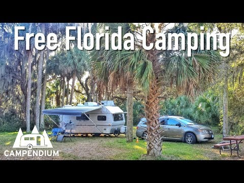 Free Camping In Florida!