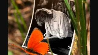 MARK HOLLIS the colour of spring