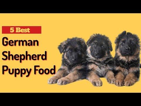 5 Best Dog Food For German Shepherd Puppy   German Shepherd Puppy Food.