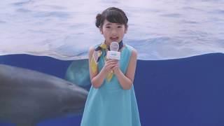 2017年7月21日~8月24日公開の京都水族館TVCMです。