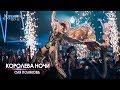 Поделки - Оля Полякова — Королева ночи [Концерт «КОРОЛЕВА НОЧИ»]