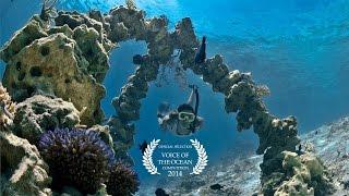 Manta Reef Restoration Park - Gili Island