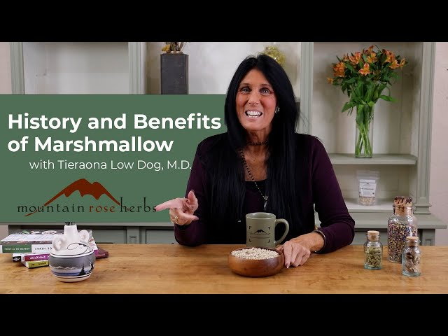 History and Benefits of Marshmallow with Tieraona Low Dog, M.D.
