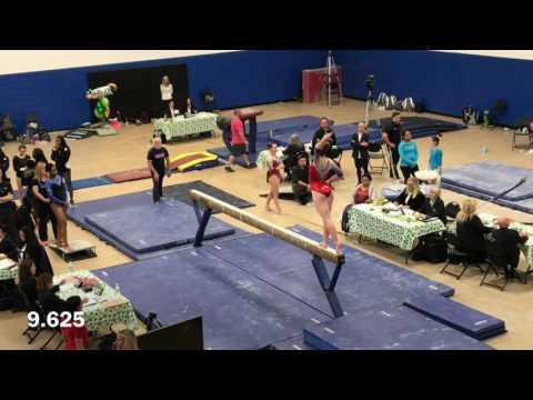 Abby Johnston 2017 FL State Meet