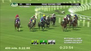 Vidéo de la course PMU PREMIO TOCOFONDO 2009 (PELOTON A) (INTERNET)