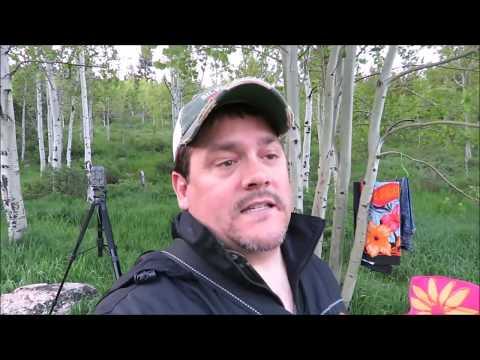 Game Camera Set Up Recent Bigfoot Sighting Idaho
