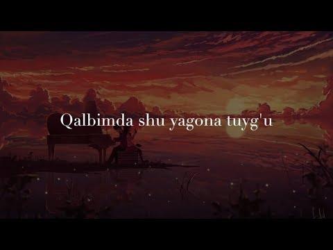 😘😍❤️Seni Sevaman❤️😍😘💏💘💋💋💋 (Lyrics)