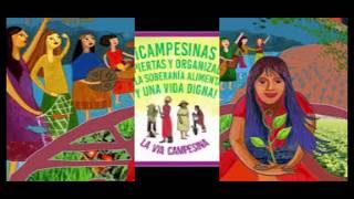 La Voz de Anamuri 3: Hoy 17 abril Conmemoramos el Día internacional de las luchas Campesinas