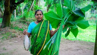 Hilsa & Arum Spinach Village Cooking Recipe by Village Food Life thumbnail