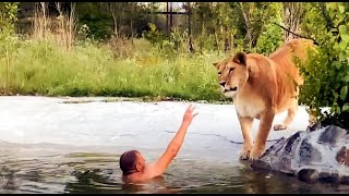 Решил ИСКУПАТЬСЯ СРЕДИ ЛЬВОВ! I DECIDED TO SWIM AMONG THE LIONS !