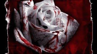 Обзор книги Вампиррова победа. Саймон Кларк. Обзор книги про вампиров. Саймон Кларк вампирова победа