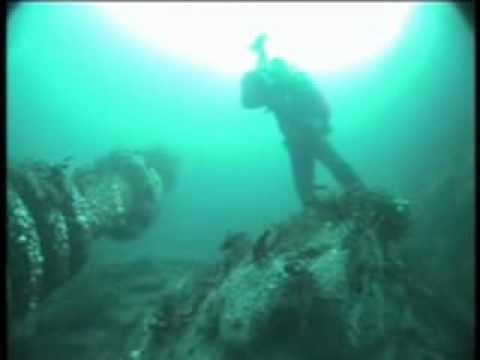 VIDEORAY - MARINE LIFE OBSERVATION Seal Habitat